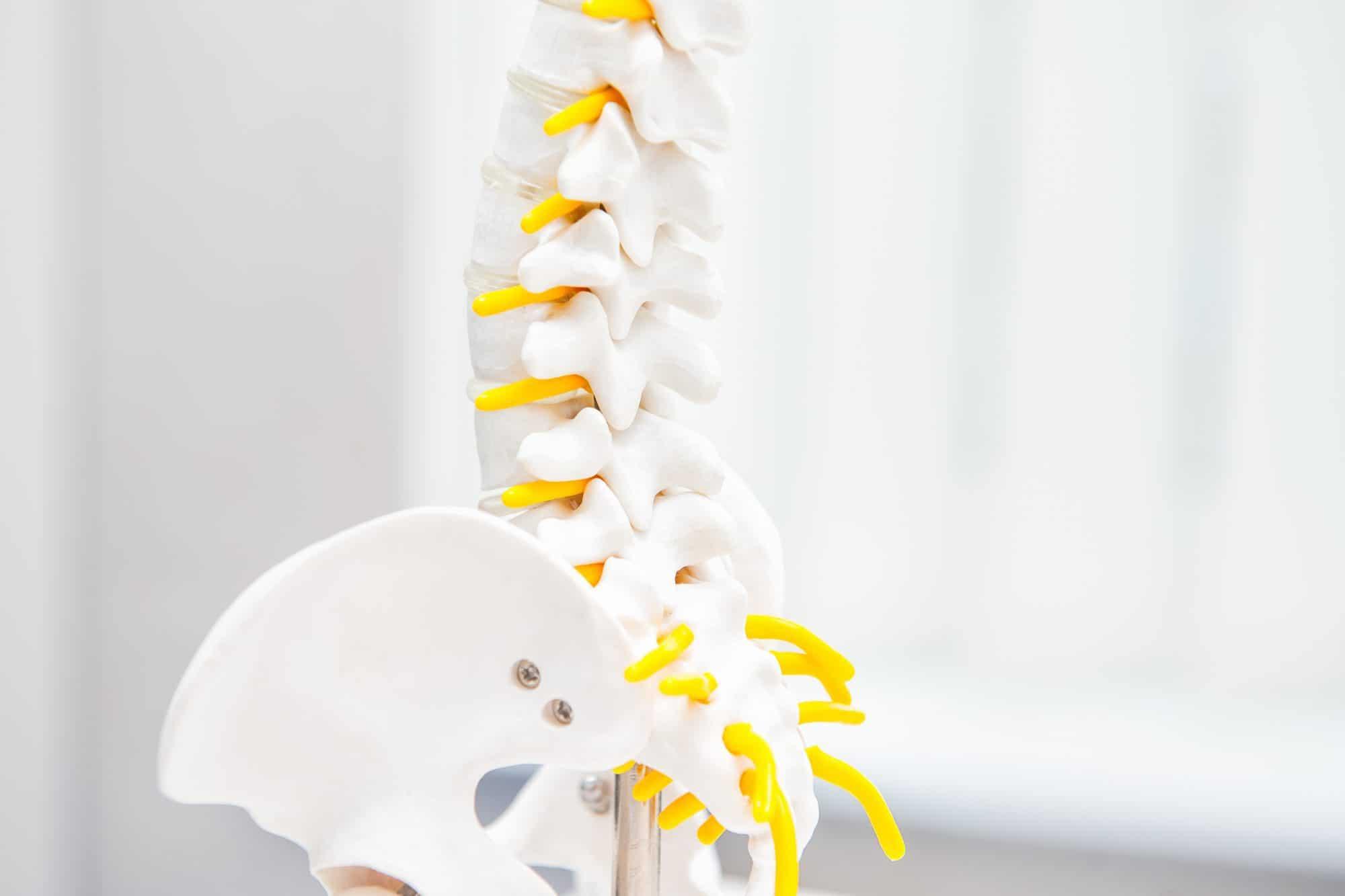 Síntomas y diferencias de evaluación en una subluxación o fijación vertebral
