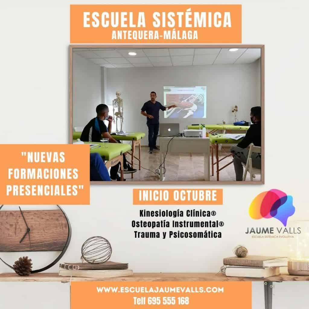 Escuela Sistémica Antequera - Málaga