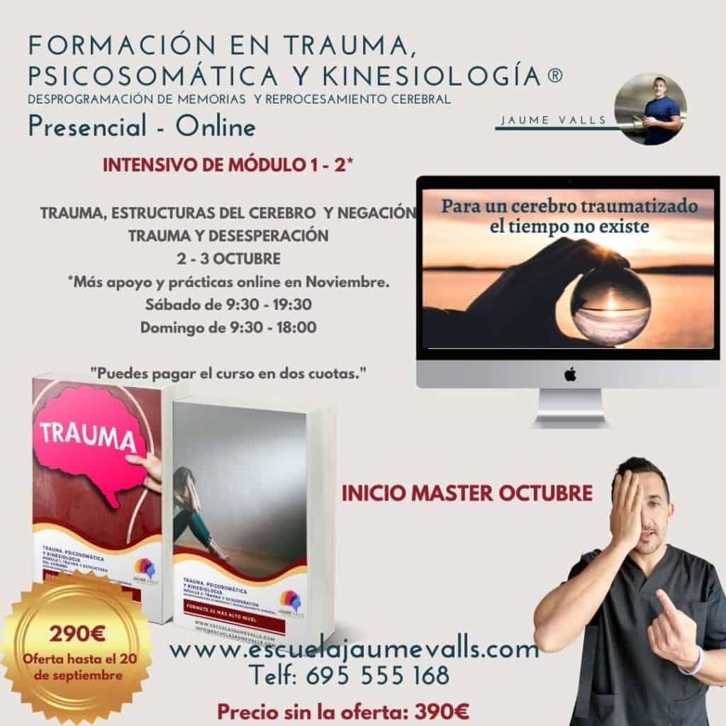 Trauma, Psicosomática y Kinesiología